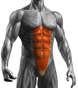 břicho1